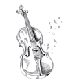 musical instrument violin on white background vector image vector image