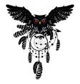 owl with dreamcatcher vector image