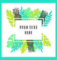 beautiful and bright tropical frame background vector image