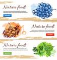 natural food hand drawn banners vector image