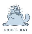 cartoon fat cat went crazy vector image