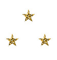 gold luxury stars vector image vector image