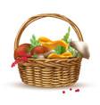 mushrooms in basket composition vector image