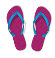 Pair of flip flops slippers vector image