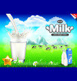 pouring milk ads cows on green field background vector image vector image