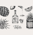 tequila background glass bottle shot with lime vector image vector image