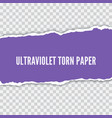 torn paper realistic vector image vector image