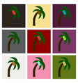 palm tree isolated vector image vector image