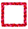 Rose Petals Frame vector image vector image