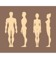 Silhouettes of men and women Anatomy vector image