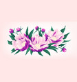 composition of pink peony flowers vector image vector image