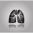 Human lungs with bronchial tree vector image vector image