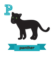 Panther P letter Cute children animal alphabet in vector image vector image