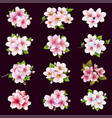 set cherry and apple blossom sakura tree vector image