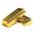 two gold bars vector image vector image