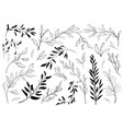Vintage set of hand drawn tree branches with
