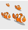 Clown fish small and close up isolated vector image vector image