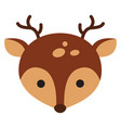 cute badeer on white background vector image