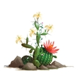 Fancy blooming cactus in soil with flowers vector image