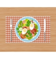 fresh vegetable salad with egg on plate vector image