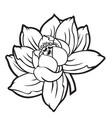 lotus flower silhouett 06 vector image