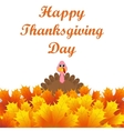Turkey peeking out from autumn leaves vector image