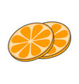 two slices of orange hand drawn image fruity icon vector image vector image