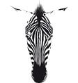 Zebra Head vector image vector image