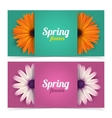 Flowers and frame for text vector image vector image