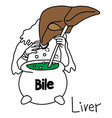 metaphor function of a liver to produce bile vector image
