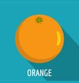 orange icon flat style vector image vector image