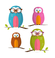 Owls Set Isolated on White Background vector image