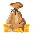 Bag with money vector image