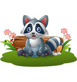 cartoon raccoon in the forest vector image vector image