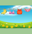 cloth hanging on rope vector image vector image