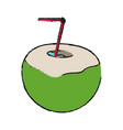 coconut cocktail tropical icon image vector image