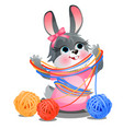 cute naughty bunny playing with tangles woolen vector image