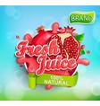 fresh pomegranate juice label vector image vector image