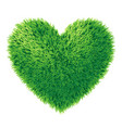 grass heart isolated on white background vector image vector image