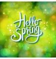 Hello Spring sparkling green card design vector image vector image