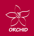 logo orchid design vector image