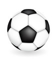 naturalistic 3d kind of soccer ball vector image