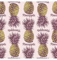 Seamless pineapple background vector image vector image