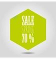 spring sale icon in hexagonal shape vector image vector image