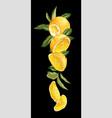 vertical fruit decor line with orange fruit vector image vector image