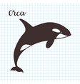 hand drawn killer whale sketch vector image