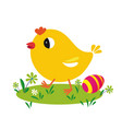 little yellow chicks on green meadow vector image