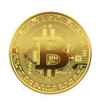 one golden bitcoin on white background vector image vector image