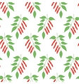 Seamless pattern leaves of Chinese Schisandra vector image