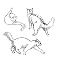 Set of sketch cats vector image vector image